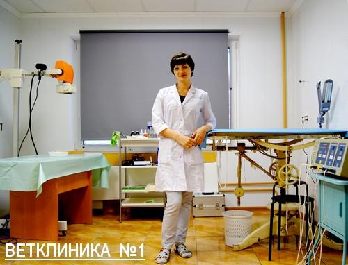 ветклиника №1, поселок Пироговский, ул.Советская д.1 Б.