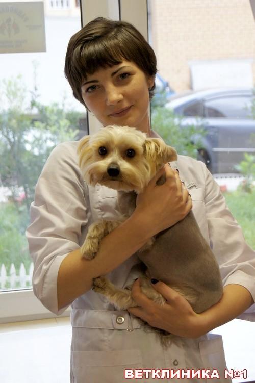 ветклиника пос.Пироговский, диагностика болезней кошек и собак