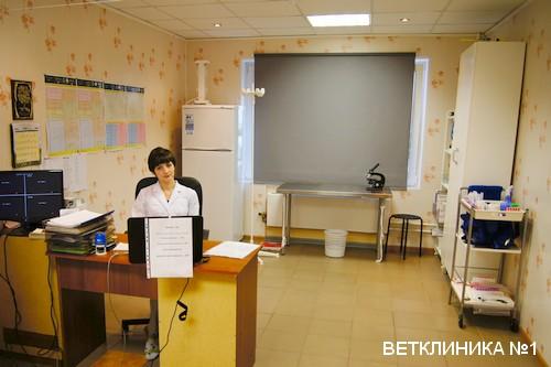 ветаптека, поселок Пироговский, мытищинский район